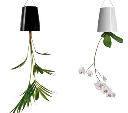 Riciclo creativo la fioriera con i pallet bolle di natura for Vasi sospesi per piante